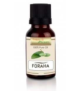 Happy Green Foraha Oil - Minyak Virgin Calophyllum Inophyllum
