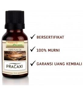 Happy Green Pracaxi Carrier Oil - Minyak kacang Pracaxi Murni